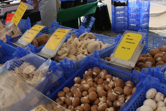 Mushrooms III