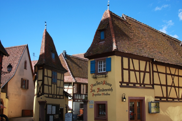 Wine Store in Eguisheim