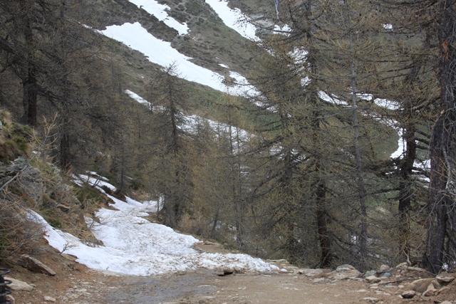 Icy Road Up Ahead
