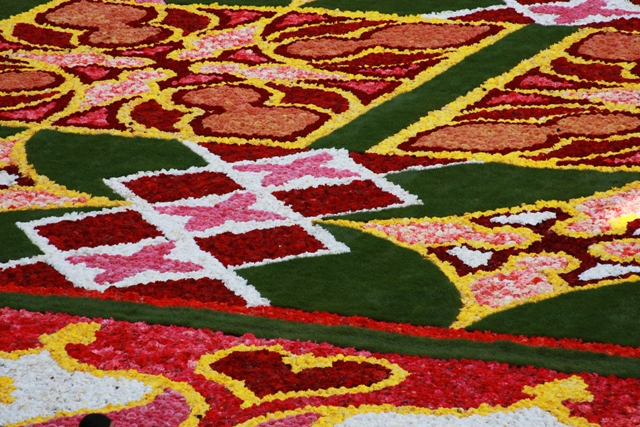 Another Section of Flower Carpet