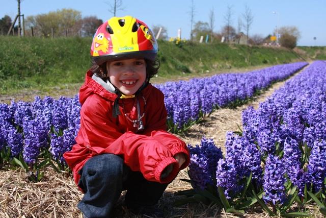 C near Hyacinth