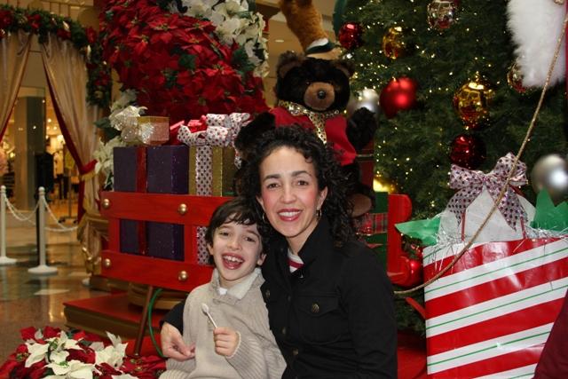 Santa's Mall Village