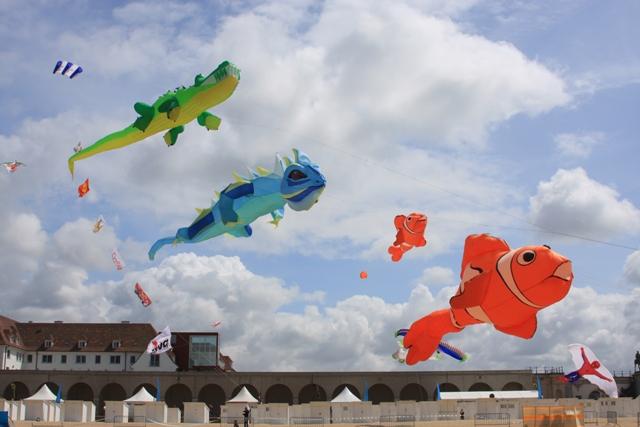 Nemo Kite