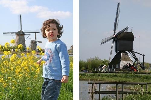 Calder_windmill_ii