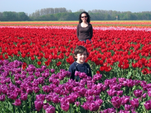 Lil_c_i_in_the_tulip_fields_2