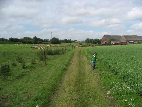 Trip_to_the_farm