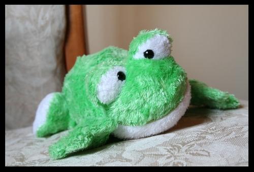 Fuzzy_froggie