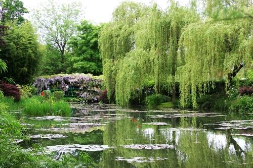 Monets_water_gardens
