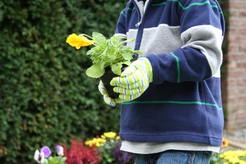 Planting_flowers_ii