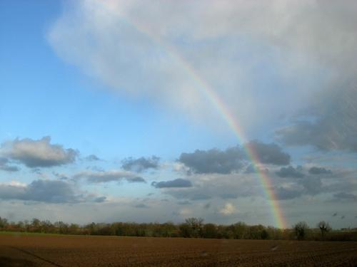 Rainbow_in_belgium
